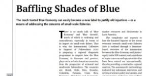 Economía Azul en América Latina: Desconcertantes sombras de azul