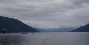 Los recursos comunes del mar en el sur-austral de Chile: Análisis de la construcción institucional de los Espacios Costeros Marinos para Pueblos Originarios en la provincia de Llanquihue, Región de Los Lagos
